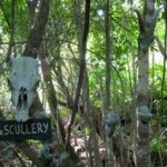 The Scullery: Will's Gully