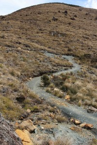 The track just below the Coppermine Saddle.